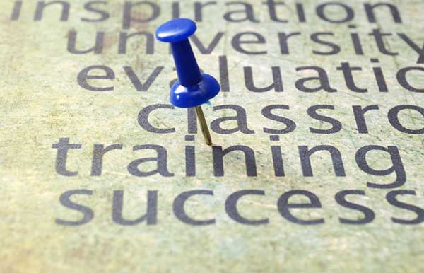 pin in sheet with words Training and Success